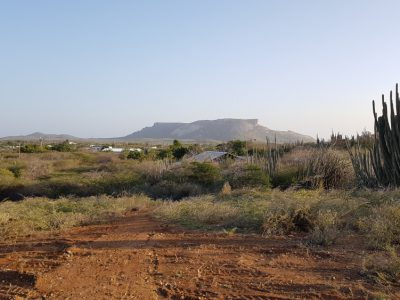 Property Land 6000m2 for sale