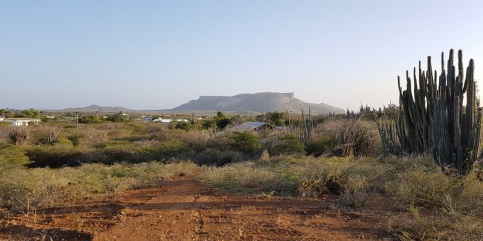 For sale property land 6000m2 Curaçao